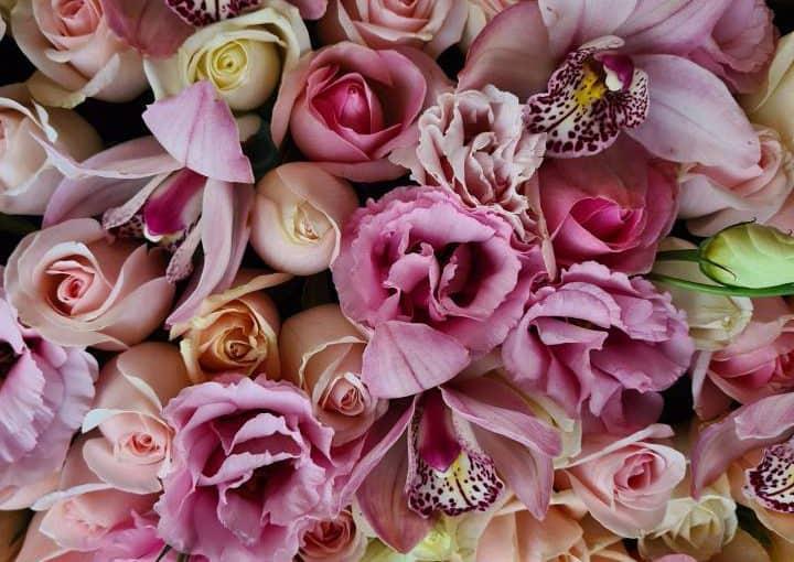 דבר אליה בפרחים – פרחים ליום האהבה
